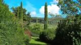 2020-213-Luxury-Villa-in-Tuscany-14