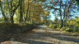 243-Bungalow-park-Camping-4