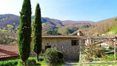 Image for In Raggiolo Tuscany - 341