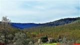 344-Horse-farm-for-sale-Tuscany-14