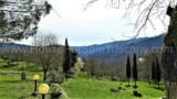 344-Horse-farm-for-sale-Tuscany-16