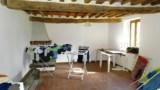 344-Horse-farm-for-sale-Tuscany-23