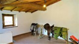 344-Horse-farm-for-sale-Tuscany-26