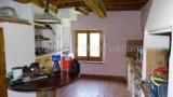 344-Horse-farm-for-sale-Tuscany-28