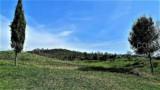 344-Horse-farm-for-sale-Tuscany-3