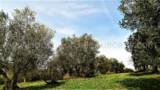 344-Horse-farm-for-sale-Tuscany-38