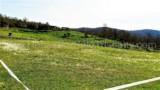 344-Horse-farm-for-sale-Tuscany-42