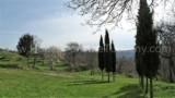 344-Horse-farm-for-sale-Tuscany-44