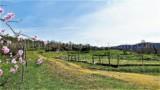 344-Horse-farm-for-sale-Tuscany-8