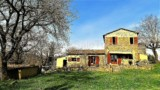 344-Horse-farm-for-sale-Tuscany-9