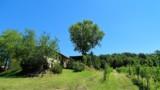 395-Villa-with-vineyard-in-Chianti-10