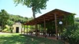 395-Villa-with-vineyard-in-Chianti-11