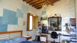 395-Villa-with-vineyard-in-Chianti-33