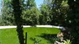 395-Villa-with-vineyard-in-Chianti-51
