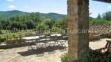 447-Tuscan-villa-near-Arezzo-7