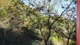 456-Tuscany-Valboncione-13