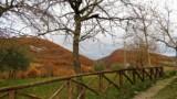 463-Ponte-Singerna-in-Tuscany-18