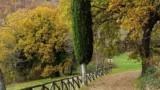 463-Ponte-Singerna-in-Tuscany-19