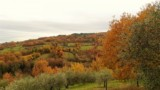 463-Ponte-Singerna-in-Tuscany-7