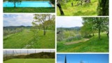 518-Luxury-Villa-in-Tuscany-6