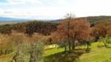 518-Luxury-Villa-in-Tuscany-9