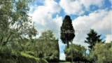 563-Tuscan-Villa-Arezzo-2