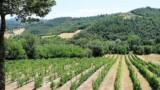 587-Villa-in-Monterchi-Tuscany-12