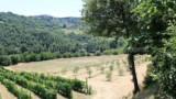 587-Villa-in-Monterchi-Tuscany-23