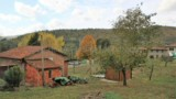 641-AN-UNIQUE-OPPORTUNITY-5-HOUSES-IN-TUSCANY-FOR-1-PRICE-9