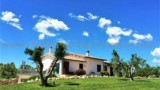 651-Villa-by-the-sea-in-Tuscany-1
