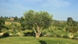 651-Villa-by-the-sea-in-Tuscany-12