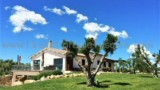 651-Villa-by-the-sea-in-Tuscany-13