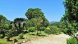 675-Villa-in-Lucca-9