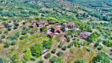 691-AGRITURISMO-OLIVE-OIL-AND-WINE-MAKING-25