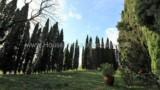 780-Original-Tuscan-villa-11