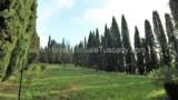 780-Original-Tuscan-villa-7