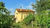848-Monte San Savino - 1