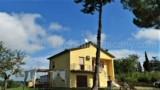 848-Monte San Savino - 2