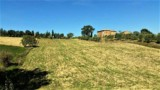 850-Torrita di Siena- 12