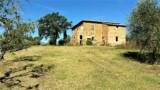 850-Torrita di Siena- 2