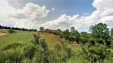 850-Torrita di Siena- 6