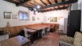 865-Pontenano-Talla- 17