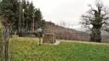 865-Pontenano-Talla- 6