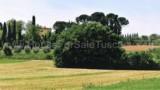 571-Monte San Savino-7