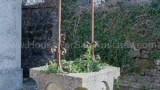 915- Castiglione dei Pepoli - 21