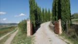 934- Crete Senesi-Asciano- 14